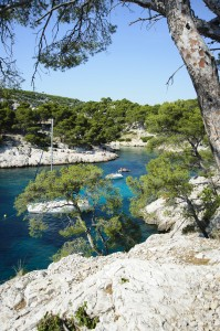 Calanque Port-Pin, Cassis, South of France by David GABIS.