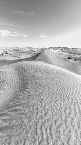 Dunes and Mountains landscape in black and white