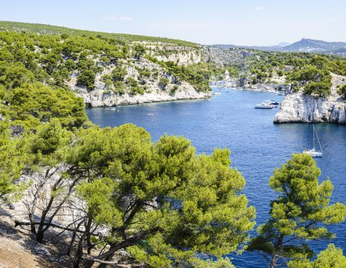 Calanque and port of Port-Miou, Cassis, South of France 🇫🇷
