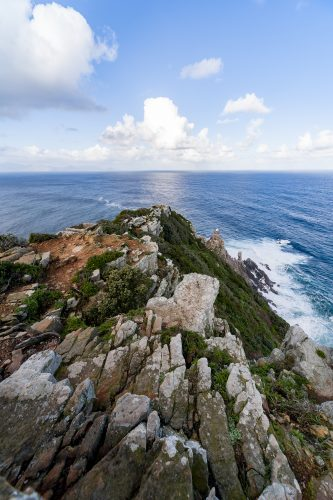 Picture taken at Cape Point, close to Cape Point Lighthouse, Cape town, South Africa 🇿🇦