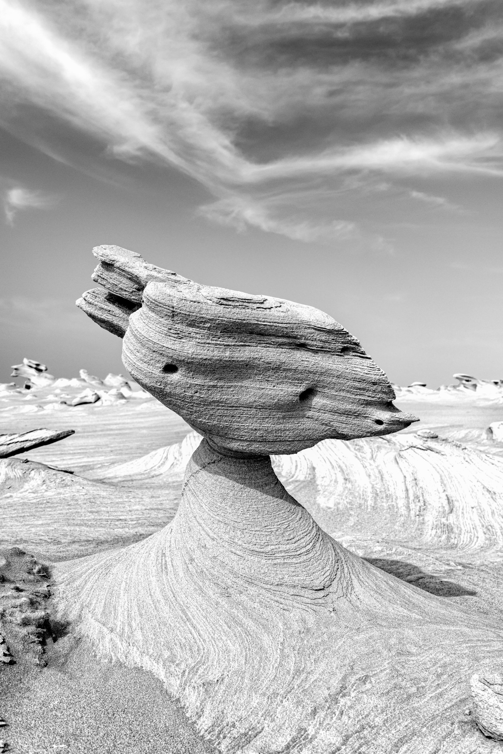 Mother Nature Design - Al Wathba Fossil Dunes, Abu Dhabi, UAE
